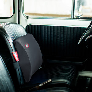 Rafys Rugkussen Auto
